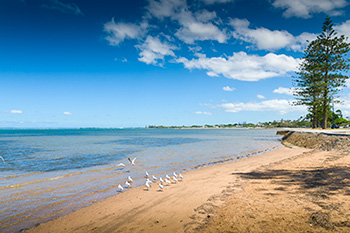 Wynnum Manly foreshore